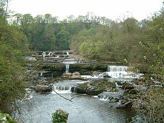 River Ure - Aysgarth Falls in Wensleydale