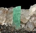 Béryl var. émeraude sur quartz (Pingwu Sichuan - Chine).JPG