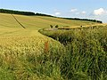 B4000 in Wheat Country - geograph.org.uk - 25990.jpg