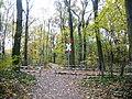 Bahnübergang im Vogelschutzgebiet am Wildmeisterdamm in Rudow.jpg