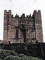 Bamburgh Castle - geograph.org.uk - 261046.jpg