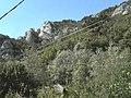 Banat, St.Helena - panoramio (35).jpg