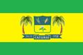Bandeira de Caturaí.png