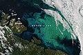 Barents amo 2021196.jpg