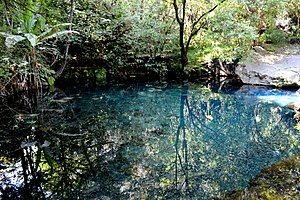 Barranca del Cupatitzio National Park - Pond of the spring that is the source of the river
