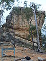 Base of whiterock qld.JPG