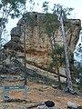 Base of whiterock qld.JPG
