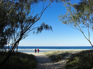 Kingscliff, New South Wales Town in New South Wales, Australia
