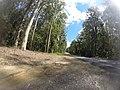Benandarah NSW 2536, Australia - panoramio (68).jpg