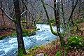 Beneath Bobovac - panoramio.jpg