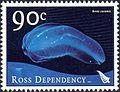 Beroe cucumis stamp.jpg
