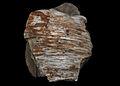 Betula wood (15565304270).jpg