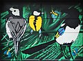 Birds At The Garage (146599847).jpeg