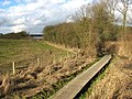 Boardwalk along the River Thet south-west of Bridgham - geograph.org.uk - 1733813.jpg