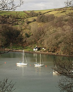 Boats on the River Dart - geograph.org.uk - 1188630