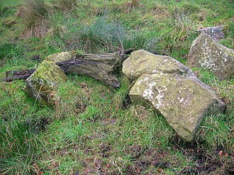 Auchentiber - Bog wood and boulders at the Stumpy Knowe near South Auchenmade; a possible man-made mound lying above the surrounding old raised bogs.