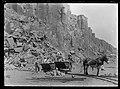 Bombo Quarry near Kiama, NSW, c.1916 , Rex Hazlewood 01.jpg