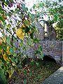 Bornheim-Roesberg-Burg-PA300081.JPG