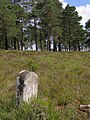 Boundary marker on Kingston Great Common, New Forest - geograph.org.uk - 501203.jpg