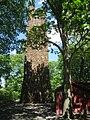 Bowman's Hill Tower - IMG 8247.JPG