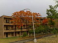 Boys hostel DCRUST Murthal.jpg