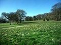 Bramdean Common - geograph.org.uk - 1212272.jpg