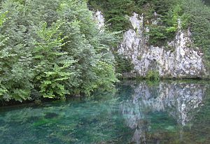 Brenz (river) - The source of the Brenz