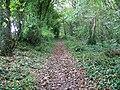 Bridleway, Park Hill - geograph.org.uk - 1013376.jpg