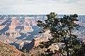 Bright Angel Trail, South Rim, Grand Canyon (30233964733).jpg