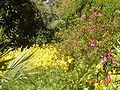 Brookgreen Gardens31.jpg