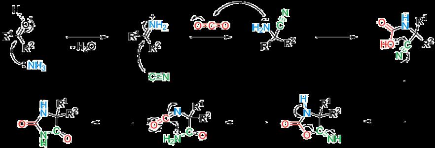 Bucherer–Bergs reaction - Wikipedia