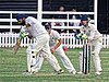 Buckhurst Hill CC v Dodgers CC at Buckhurst Hill, Essex, England 51.jpg
