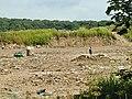 Bunny Landfill Site - geograph.org.uk - 25143.jpg