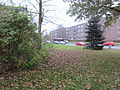 Bus 42 Suchsdorf Rungholtplatz in Kiel-Steenbek-Projensdorf.jpg
