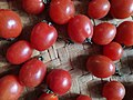 Bush tomato.jpg