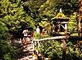 Butchart Gardens - Victoria, British Columbia, Canada (28712239563).jpg