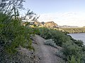 Butcher Jones Trail - Mt. Pinter Loop Trail, Saguaro Lake - panoramio (33).jpg
