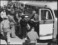 Byron, California. Farm families of Japanese ancestry boarding buses for Turlock Assembly Center 65 . . . - NARA - 537457.tif