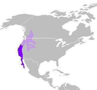 California quail - Image: C. californica distribution