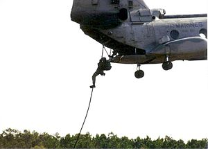 Radio Reconnaissance Platoon - A Radio Reconnaissance Marine fast roping from a CH-46 Sea Knight