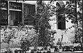 CH-NB - Iran, Teheran (Tehran)- Gärten - Annemarie Schwarzenbach - SLA-Schwarzenbach-A-5-19-025.jpg