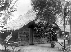 Attap dwelling - A house with atap roof and walls. Image:Tropenmuseum