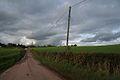 Cadeleigh, towards Beerash Cross - geograph.org.uk - 68068.jpg