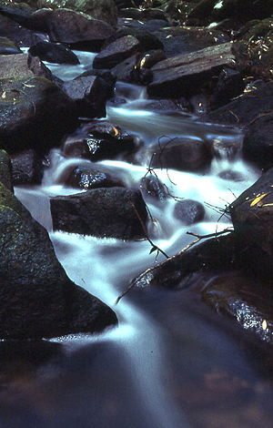 Mount Kuring-gai, New South Wales - Cascades along Calna Creek