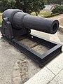 Cannons in the Eternal Golden Castle.jpg