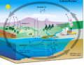 Carbon cycle-cute diagram-german.png