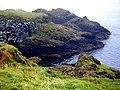 Carrickarade Island - geograph.org.uk - 455697.jpg