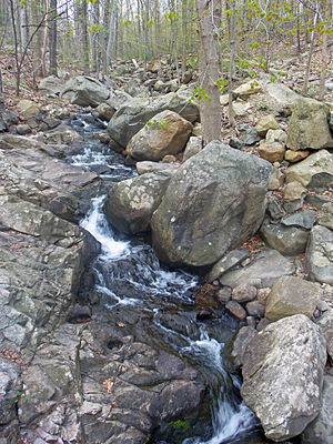 Breakneck Brook - Cascade on brook at Undercliff Trail bridge