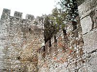 Castelo de Torres Novas (27).JPG