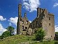 Castles of Leinster, Ballycowan, Offaly (2) - geograph.org.uk - 1952697.jpg